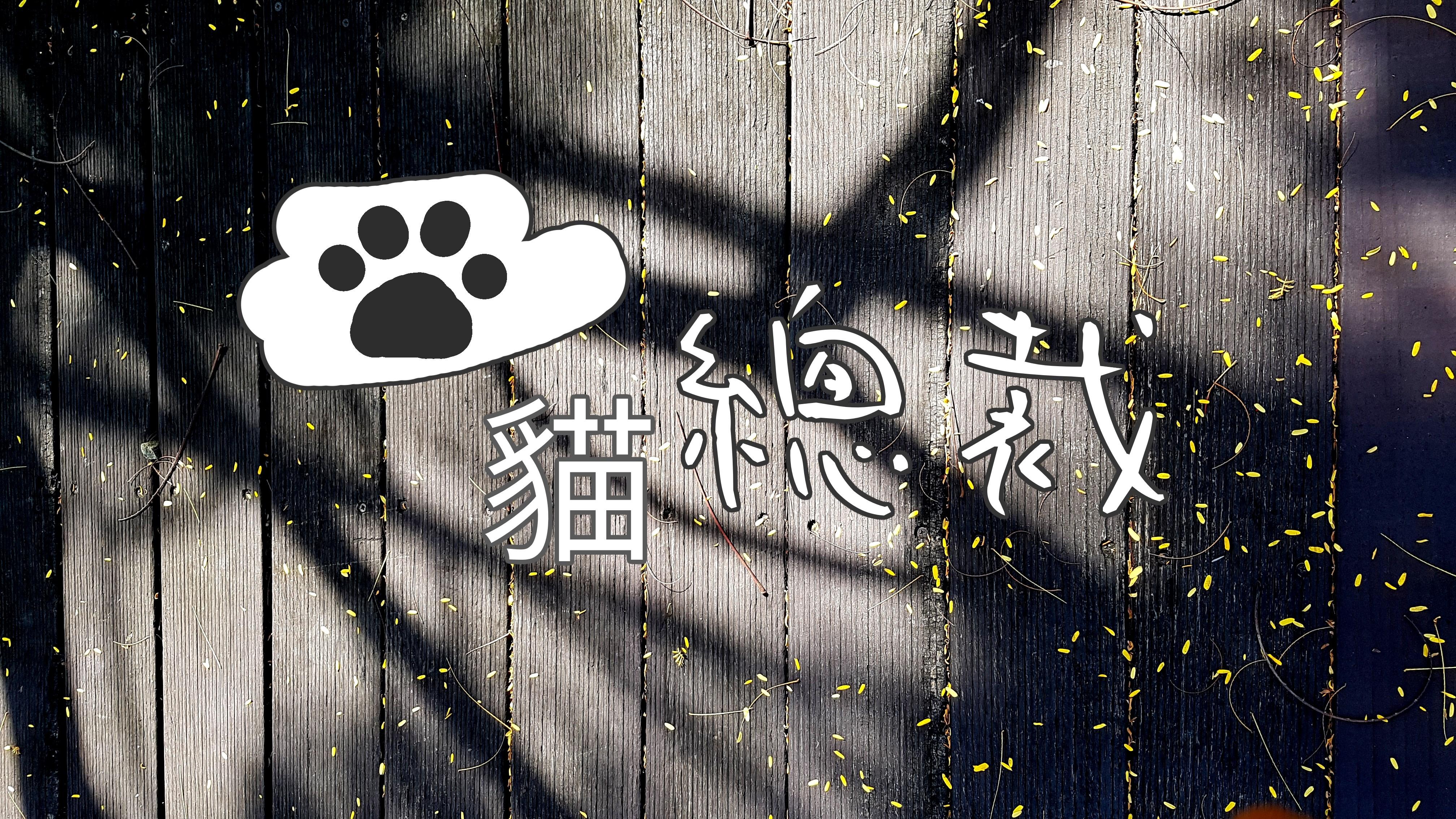 日郡TNR誘捕籠